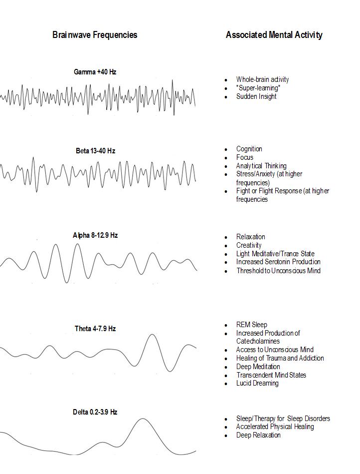 THE DIFFERENT TYPES OF SLEEP | Golden Supplement